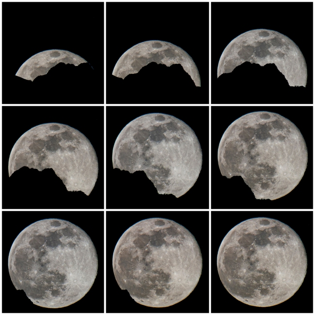 moon risesm